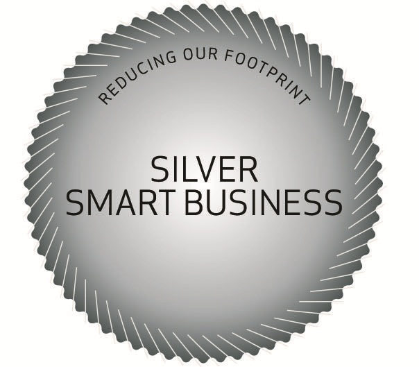 Smart Business Medal - Silver