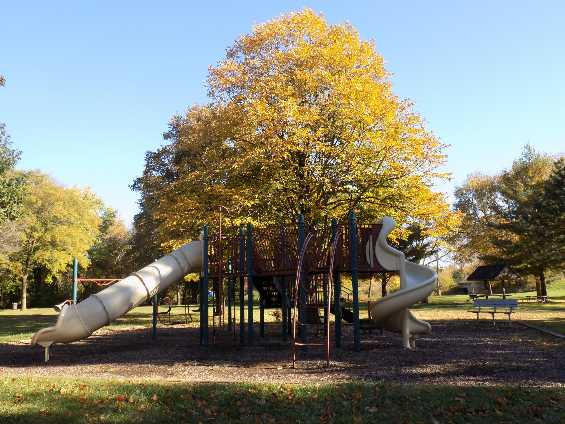Playground equipment near a large tree at Stuart Smith park