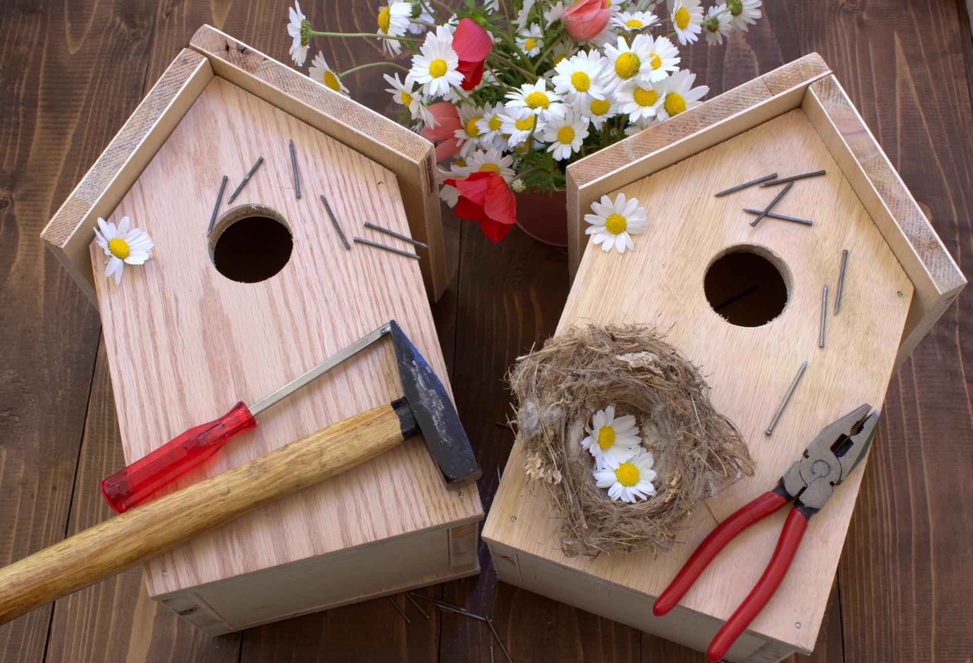 Birdhouse with tools